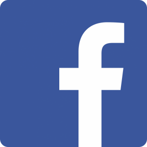 Facebook_Vector_Logo_Hd_02